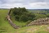 Hadrian's Wall Trip :